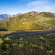 Road - Corsica — Stock Photo