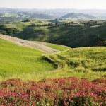 Tuscany — Stock Photo