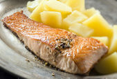 Salmon — Stock Photo