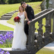 Wedding — Stock Photo #30082923