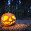 Halloween pumpa — Stockfoto