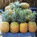 Pineapple — Stock Photo #45423913