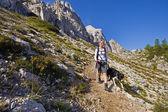 Piesze wycieczki z psem — Zdjęcie stockowe