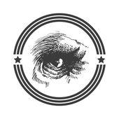 Vector animal eye. Hand drawn. Eps8 — Stock Vector
