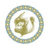 Hand drawn gorilla vector eps8 — Stock Vector