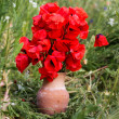 Nice bouquet of red poppy flowers — Stock Photo #46401649
