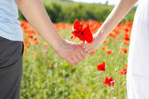Couple holding hands in the fields of poppies — Stock Photo