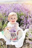 Beautiful little girl in lavender field — Stock Photo