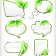 Banners with leaf. Vector illustration — Stock Vector #12535637