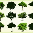 Collection green trees. Vector illustration — Stock Vector #12718953