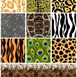 Set seamless patterns animals. Vector — Stok Vektör