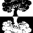 Two black and white trees. Vector — Stock Vector #13820028