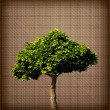 Vintage Tree Silhouette on beige canvas. Vector — Imagen vectorial