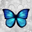 Butterfly In Blue Tones. Vector - Stock Vector