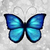 蝴蝶的蓝色色调。矢量 — 图库矢量图片