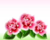 Éléments de design floral de roses roses. Vector — Vecteur