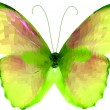 Bright butterfly. Vector — Stockvectorbeeld