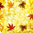Autumn illustration gold background. Vector — 图库矢量图片