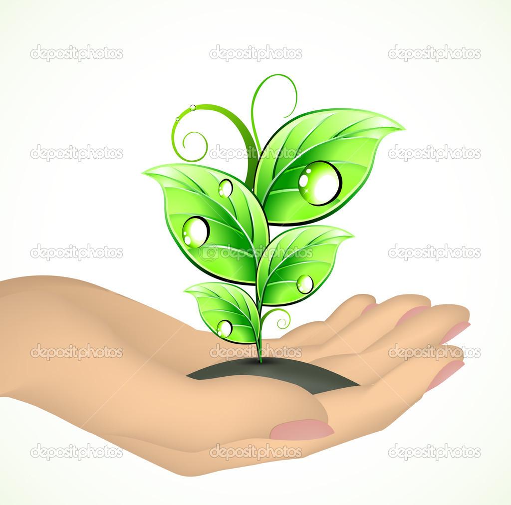 手,一棵植物.矢量