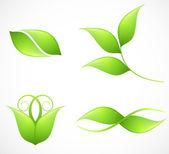 Conjunto de imágenes de hoja verde. Vector — Vector de stock