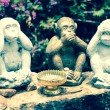 Stock Photo: Three Monkeys - no speak, no see, no hear