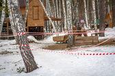 Häst i vinter skog — Stockfoto