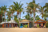 Beach bungalow with coconut trees — Stock Photo