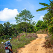 Motorbike parked in a tropical island — Stock Photo #40126011