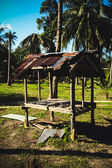 Hut  in the jungle with palm trees — Stok fotoğraf