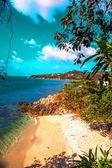 Tropik ada tayland — Stok fotoğraf