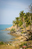 Tropical island in thailand — Stock Photo