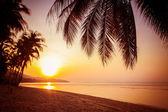 Beautiful sunrise over the tropical beach — Stock Photo