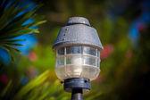 Lamp lantern in the park — Stock Photo