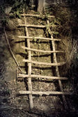 Wooden Long ladder in the Forest — Stock Photo