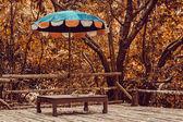 Lehátko s deštníkem v lese džungle — Stock fotografie