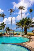棕榈树丛中的露天游泳池 — 图库照片