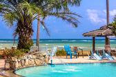 Palm tree over tropical beach — Stockfoto