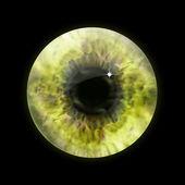 Yellow eye pupil macro. Vector — Stock Vector