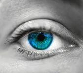 Macro de olho azul feminino. Vector — Vetor de Stock