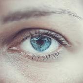 Blue woman eye macro. Vector — Stock Vector