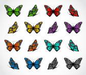 组的现实色彩艳丽的蝴蝶。矢量 — 图库矢量图片