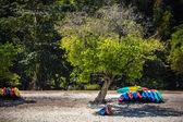 Colorful kayaks on sandy beach. — Stock Photo