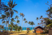 Tropical palms and beach — Stockfoto