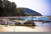 łodzie w morze na tle nieba, koh phangan — Zdjęcie stockowe