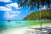 Swing hang from coconut tree over beach, Phangan island ,Thailand — Stok fotoğraf