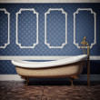 Foto de Stock  : Bathtub