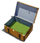 Meadow in suitcase — Stock Photo