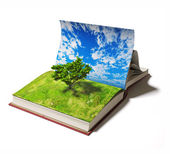 Book with tree — Stock Photo