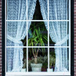 Holland Window — Stock Photo #25171883