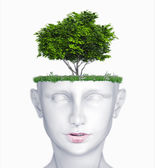 Head with tree — Stock Photo